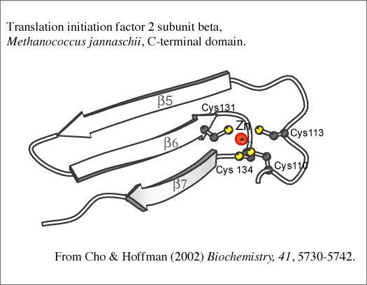 Hoffman Lab Home Page